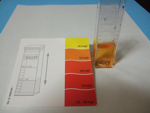 海水の色と比色紙の色を比べ、一致する色の値を読みます。