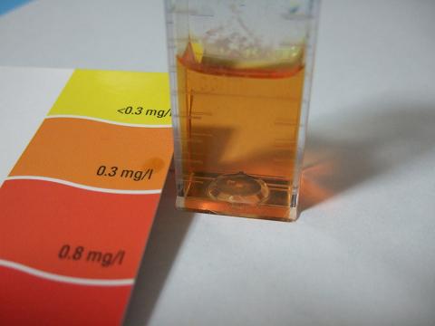 亜硝酸濃度の測定結果