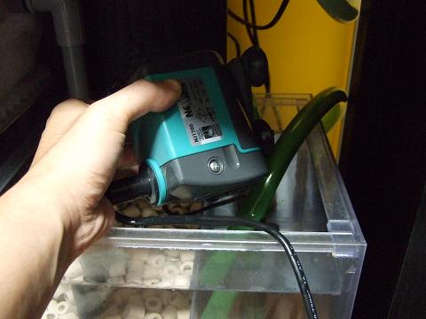 NJ1700を濾過槽から取り出します。