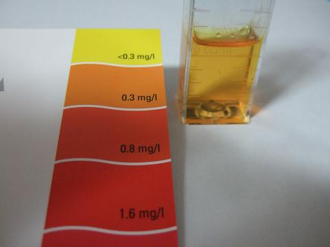 亜硝酸濃度測定結果
