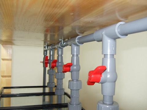 多段連結オーバーフロー水槽の最上階