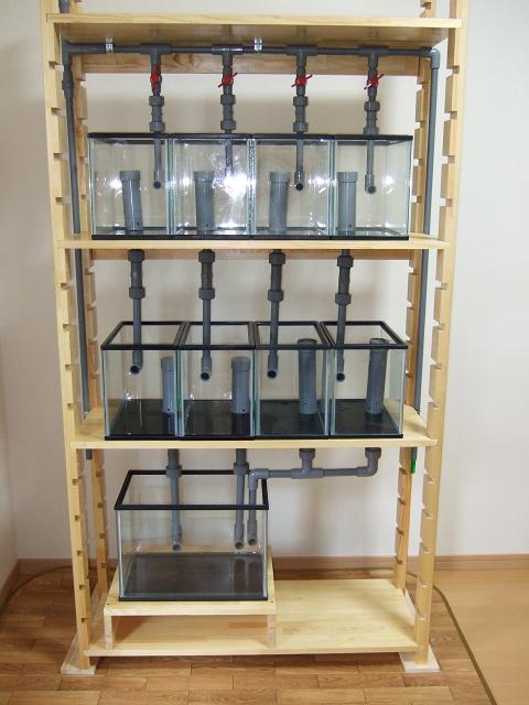 多段連結オーバーフロー水槽の全体像