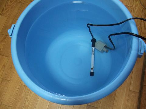 準備していた人工海水