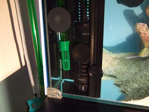 「安全第一」を水槽にセット