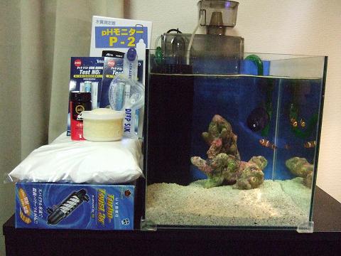 海水魚飼育セット一式