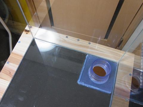 水槽マットの上に水槽をセットしました!