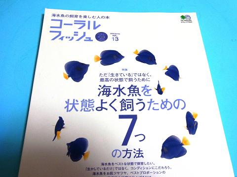 コーラルフィッシュ Vol.13