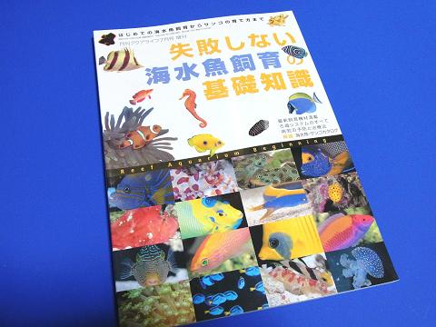 失敗しない海水魚飼育の基礎知識