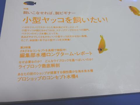 コーラルフィッシュ Vol.1  (小型ヤッコが飼いたい!)