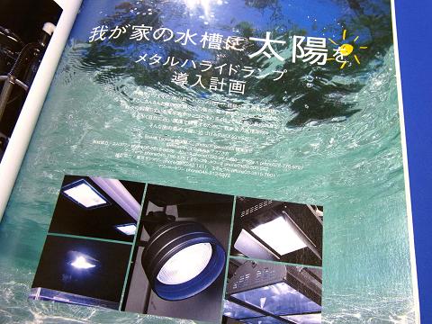 コーラルフィッシュ Vol.4  (メタルハライドランプ導入計画)