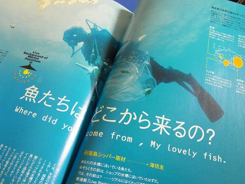 コーラルフィッシュ Vol.6  (魚たちはどこから来るの? 石垣島での採集の現場レポート)