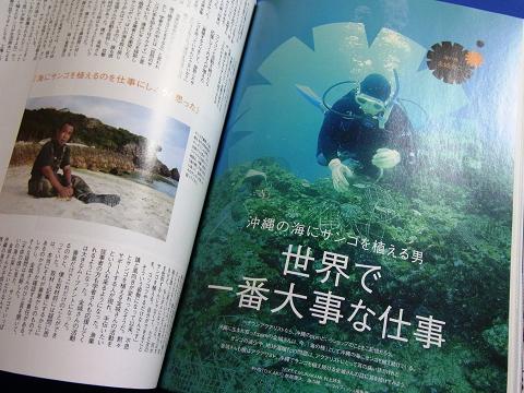 コーラルフィッシュ Vol.19  (沖縄の海にサンゴを植える男 世界で一番大事な仕事)