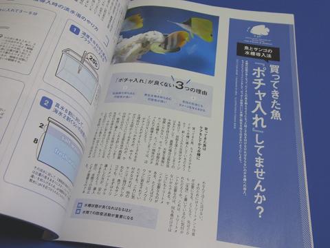 コーラルフィッシュ Vol.32  (買ってきた魚、ポチャ入れしてませんか? 魚とサンゴの水槽導入法)