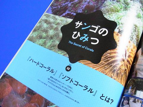コーラルフィッシュ Vol.29  (サンゴのひみつ ハードコーラル・ソフトコーラルとは?)
