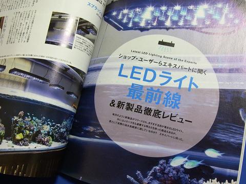 コーラルフィッシュ Vol.29  (ショップ、ユーザーらエキスパートに聞く LEDライト最前線&新製品徹底レビュー)