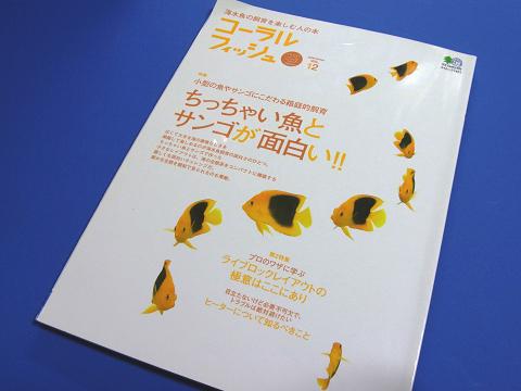 コーラルフィッシュ Vol.12  (ちっちゃい魚とサンゴが面白い!)