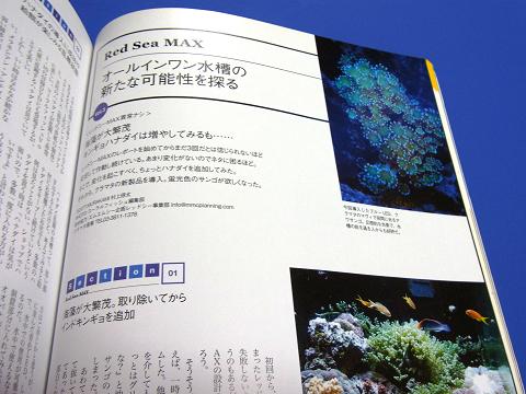 コーラルフィッシュ Vol.12  (Red Sea MAX オールインワン水槽の新たな可能性を探る)