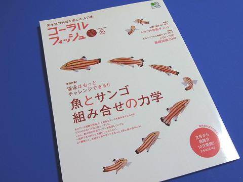 コーラルフィッシュ Vol.23  (魚とサンゴ、組み合せの力学)