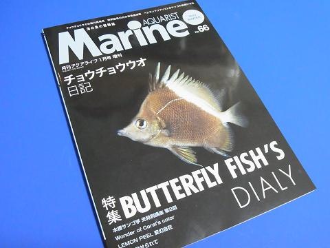 マリンアクアリスト No.66 (チョウチョウウオ日記 BUTTERFLY FISH'S DIALY )