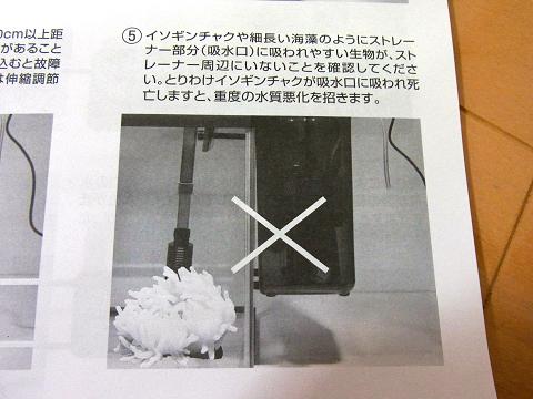 海道達磨 ストレーナーに吸い込まれないよう、注意&対策が必要