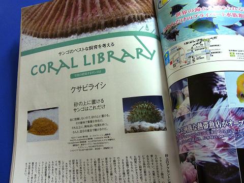コーラルフィッシュ Vol.16  サンゴのベストな飼育を考える コーラルライブラリー(クサビライシ)